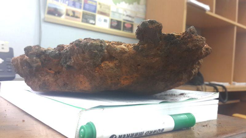 Stone or meteorite?
